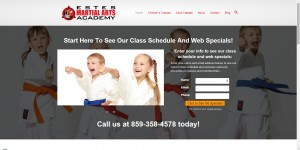 martial arts website 2